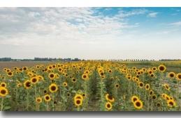Krediti za poljoprivredu