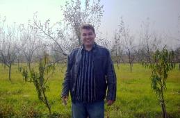 Nermin Ibrišimović